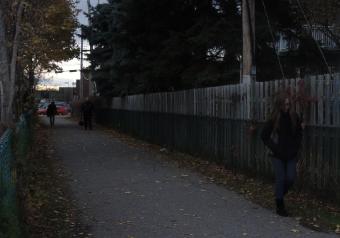 Seuls deux lampadaires de faible luminosité sont situés à chacune des extrémités de ce chemin derrière le Cégep Édouard-Montpetit. Lorsqu'il fait noir, ils ne permettent pas de voir si des gens se trouvent sur le sentier.